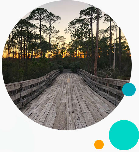 Boardwalk over Florida Swamp | Environmental Education with Keep Florida Beautiful Litter Prevention, Recycling, and Education