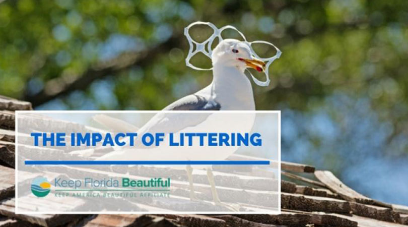 Image of Seagull with plastic around its neck with the text The Impact of Littering | Keep Florida Beautiful Blog